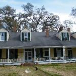 Cottage Plantation