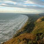 Shoreline in New Zealand