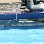 Pool Tiles in poor condition