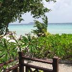 Vue du bungalow Front Beach