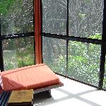 The back porch of our room was surrounded by rainforest