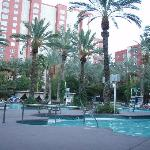 The biggest of the pools at the Flamingo