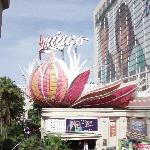 Outside view of the Flamingo Sign