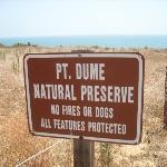 Point Dume Beach.