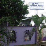 Foto de The Purple House International Backpackers Hostel