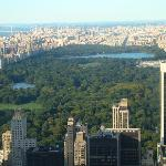 central park from the top