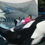 Bilde fra SeaWorld Orlando