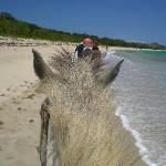 Horseriding on the beach.