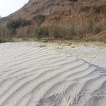Sand near the river