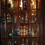 46 variedades de ginebra