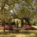 Beautiful Airlie Gardens