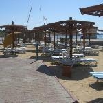 Plenty of sun loungers