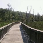 Bilde fra Newport News Park