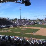 Cubs Spring Training Game