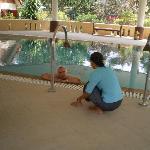 the hyrdotherapy pool