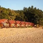 Some of the beach huts belonging to the resort.