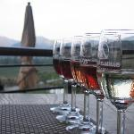 wine tasting at Hua Hin vineyard