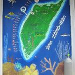 Dive Map Wall