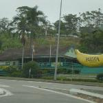 This is the Big Banana by Russel Crowe's house on the way up to the Gold Coast.  Maybe it's insp