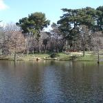 Bilde fra Retiro Park