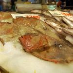 Bilde fra Sydney Fish Market