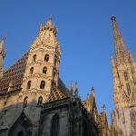 Stephansdom in the evening