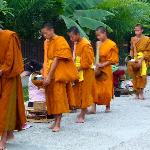 Monks gathering food for their day's meals in Luang Prabang