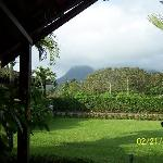The view from our room at Arenal Green