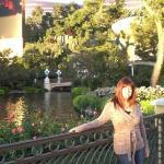 Bilde fra Wynn Las Vegas