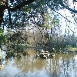 Japonská Zahrada (Japanase Gardens) - 8