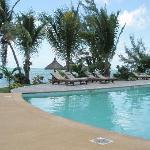 Banyan Pool