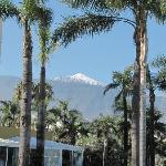 Blick vom Pool zum Teide