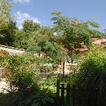 Le jardin autour de la terrasse