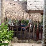 Cottage #1, oceanview