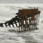 Bilde fra Peter Iredale Ship Wreck