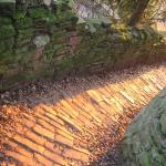 The pathway back down to the old bridge, aglow with the last moments of the day's sunlight.