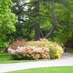 Parque Hagley