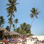 lettini da spiaggia