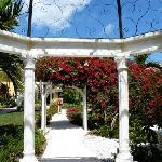 The Royal Village garden & gazebo