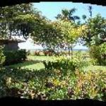 Panoramic View from our Porch