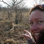 This is how close we encountered lions