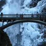 Bridge at Multnomah Falls.