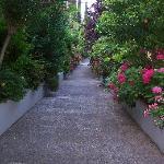 San Pietro gardens