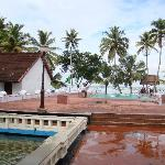 The Hotel Entrance, over looking the backwaters, the pool is calling you for a cold dip