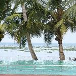 Swimming pool eye leveled at the backwaters, gives experience as if ur swimmin in backwaters its