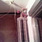 Le radiateur d'époque et sa couche de pousière
