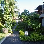 gardens in front of deluxe rooms