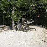 "The ""front yard"" at Fighting Conch Cottage"