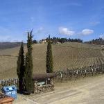 Chianti Classico region in March