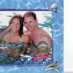 "dolphin at ""ocean world"""
